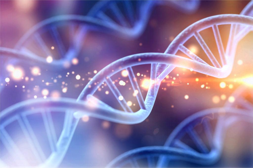 Spirale ADN