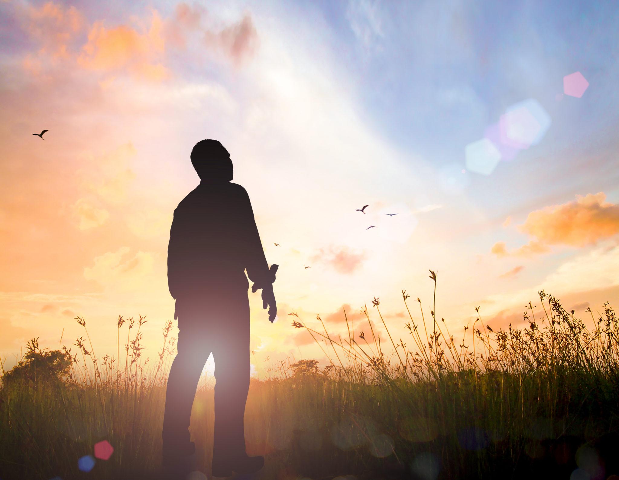 Homme regardant vers le Ciel